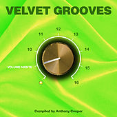 Play & Download Velvet Grooves Volume Niente! by Various Artists | Napster