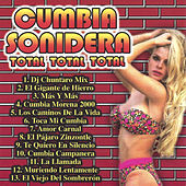 Play & Download Total Total Total by Cumbia Sonidera | Napster