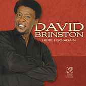 Here I Go Again by David Brinston