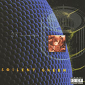Pussysoul by Soilent Green