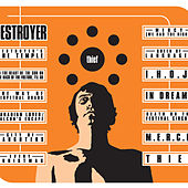 Play & Download Thief by Destroyer | Napster