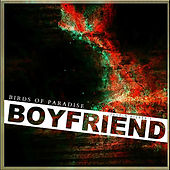 Play & Download Boyfriend by The Birds Of Paradise | Napster