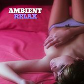 Play & Download Ambient Relax, Vol. 1 by Various Artists | Napster