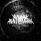 Play & Download Desideratum by Anaal Nathrakh | Napster