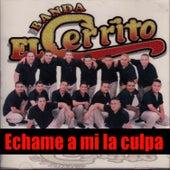Echame a Mi la Culpa by Banda El Cerrito
