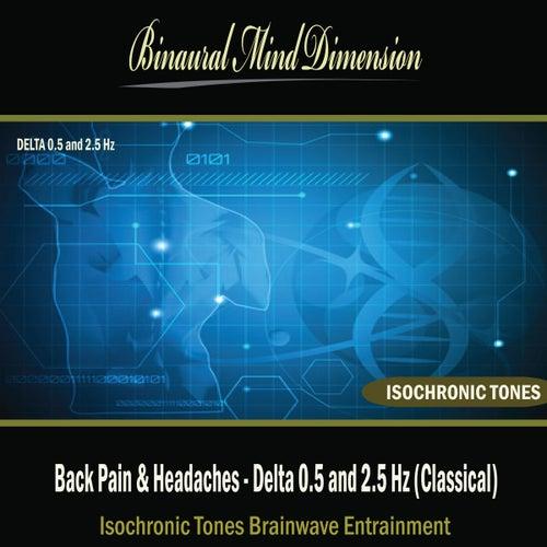 Back Pain & Headaches - Delta 0.5 and 2.5 Hz: Isochronic Tones Brainwave Entrainment by Binaural Mind Dimension