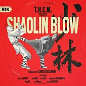Play & Download Shaolin Blow by T.H.E.M. | Napster