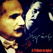 Apna Maqam Paida Kar (A Tribute to Iqbal) by Various Artists