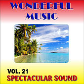 Wonderful Music Vol. 21 Spectacular Sound by Various Artists
