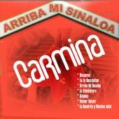 Arriba Mi Sinaloa by Carmina