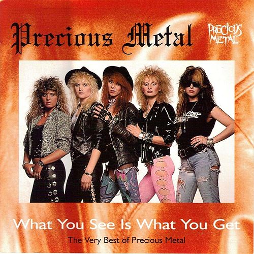 What You See Is What You Get: The Very Best of Precious Metal by Precious Metal