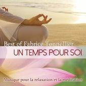 Play & Download Best Of - Un temps pour soi: musique pour la relaxation et la méditation by Fabrice Tonnellier | Napster