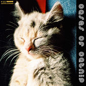 Play & Download Cases Of Catnip by Various Artists | Napster