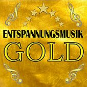 Play & Download Wellnessmusik Gold 2 by Largo | Napster