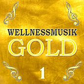 Play & Download Wellnessmusik Gold 1 by Largo | Napster