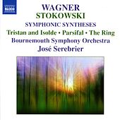 Play & Download WAGNER: Stokowski Transcriptions by Bournemouth Symphony Orchestra | Napster