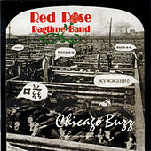Play & Download Chicago Buzz by Red Rose Ragtime Band | Napster