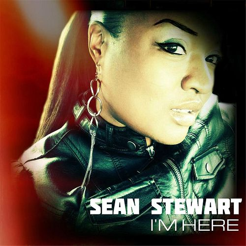 I'm Here by Sean Stewart