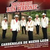 Play & Download 20 Corridos Bien Perrones by Cardenales De Nuevo León | Napster