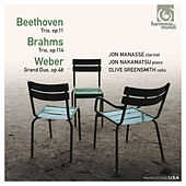 Beethoven, Brahms, Weber: Trios & Duo by Various Artists