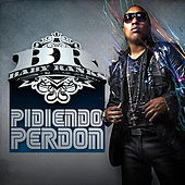 Pidiendo Perdón by Baby Ranks