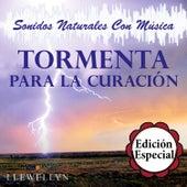 Tormenta para la Curación: Sonidos Naturales Con Música: Edición Especial by Llewellyn