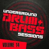 Underground Drum & Bass Sessions Vol. 14 - EP by Various Artists