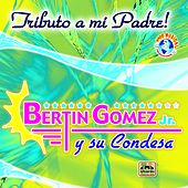 Play & Download Tributo a Mi Padre by El Condesa De Bertin Gomez Jr | Napster