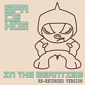 In the Meantime by Spacehog