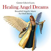 Play & Download Healing Angel Dreams: Beautiful Angelic Music for Well-Being by Gomer Edwin Evans | Napster