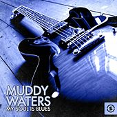 Muddy Waters - My Soul Is Blues von Various Artists