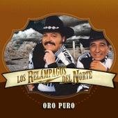 Play & Download Puro Oro by Los Relampagos Del Norte | Napster