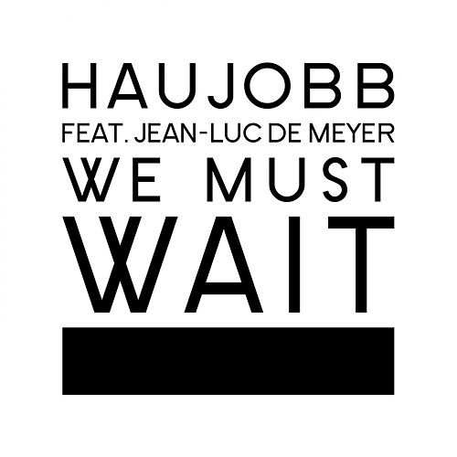 Play & Download We Must Wait by Haujobb | Napster