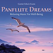 Play & Download Pan Flute Dreams: Relaxing Music for Well-Being by Gomer Edwin Evans | Napster