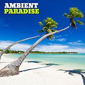 Play & Download Ambient Paradise, Vol. 1 by Various Artists | Napster