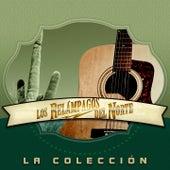 La Colección: Los Relámpagos del Norte by Los Relampagos Del Norte