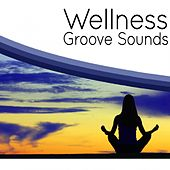 Play & Download Wellness Groove Sounds by Various Artists | Napster