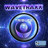 Play & Download Tribute by Wavetraxx | Napster