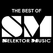 Play & Download Best Of Selektor Vol. One by Various Artists | Napster