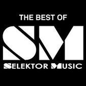 Best Of Selektor Vol. One by Various Artists