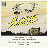 Someone Like You by Various Artists