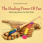 Play & Download The Healing Power of Pan: Relaxing Music for Pan Flute by Gomer Edwin Evans | Napster