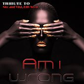 Am I Wrong: Tribute To Nico & Vinz, Lilly Wood by Various Artists
