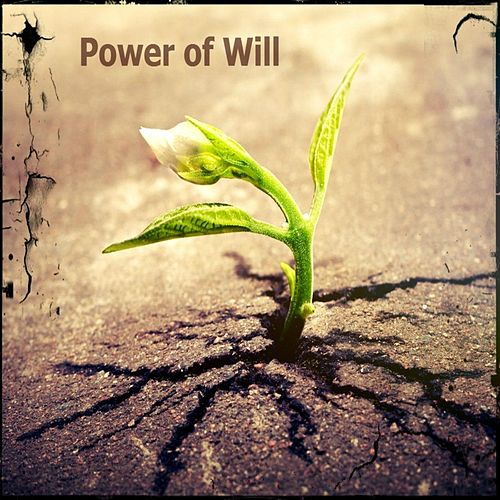 Power of Will by Alni