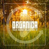 Organica #14 by Various Artists