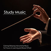 Play & Download Study Music: Calming Relaxing Instrumental Music for Focus On Learning and Mozart Effect by Calm Music for Studying | Napster