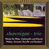 Play & Download Werke für Floete, Violoncello und Klavier by Shawnigan-Trio | Napster
