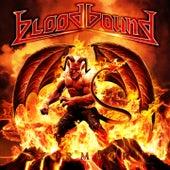 Stormborn by Bloodbound