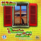 Play & Download 14 Exitos by Dueto del Sur | Napster