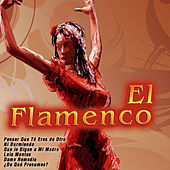 Play & Download El Flamenco by Various Artists | Napster